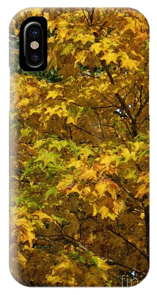 Autumnal Leaves And Trees 2 IPhone Case