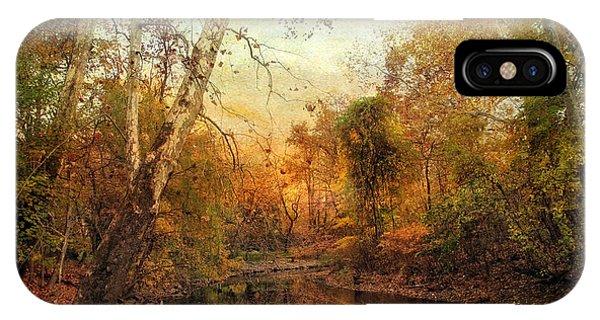 Autumnal Tones IPhone Case