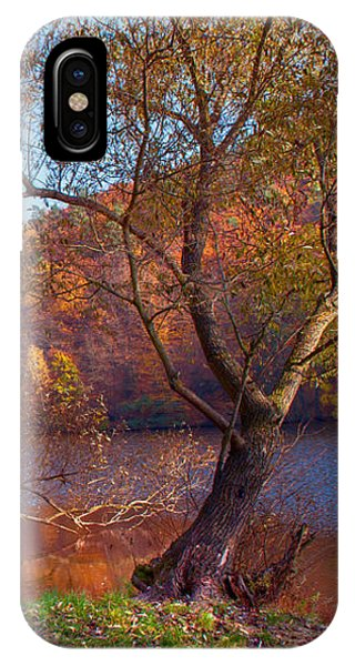Autumnal Trees By The Lake IPhone Case
