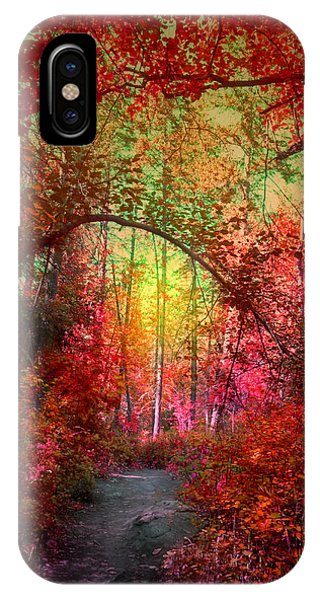 Autumn's Archway IPhone Case