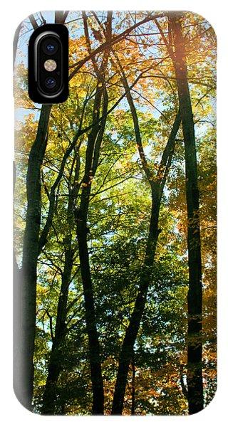 Autumns Glory IPhone Case