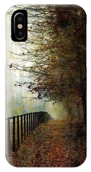 Autumns Path 7864 Idp_2 IPhone Case