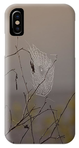 Autumns Web IPhone Case