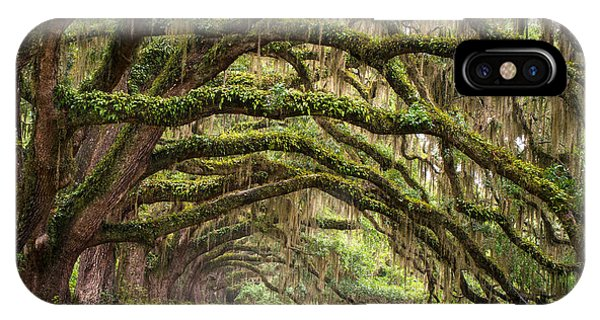 Peaceful iPhone Case - Avenue Of Oaks - Charleston Sc Plantation Live Oak Trees Forest Landscape by Dave Allen