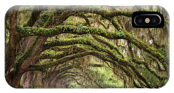Avenue Of Oaks - Charleston Sc Plantation Live Oak Trees Forest Landscape IPhone Case