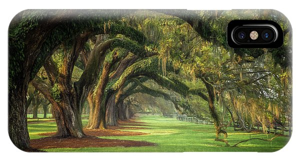 Avenue Of Oaks IPhone Case