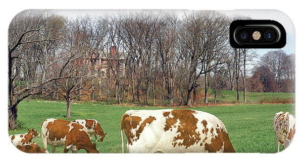 iPhone Case - Ayrshire Cows 3rd by Anthony Forster