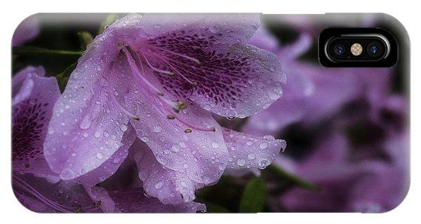 Azalea In Bloom IPhone Case