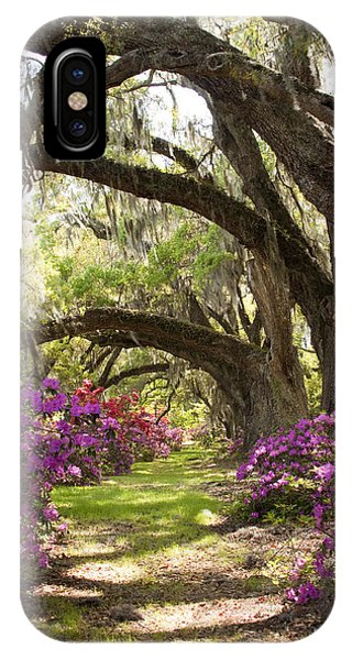 Azaleas And Live Oaks At Magnolia Plantation Gardens IPhone Case