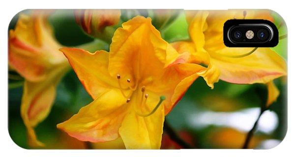 Azaleas Bright IPhone Case