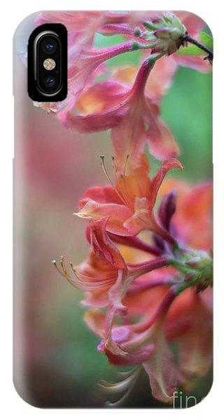 Stamen iPhone Case - Azaleas Cluster Of Flowers by Mike Reid