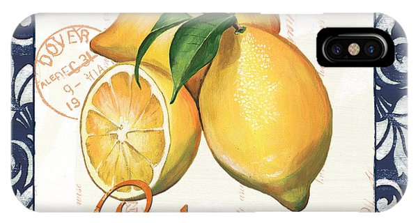 Organic Foods iPhone Case - Azure Lemon 2 by Debbie DeWitt