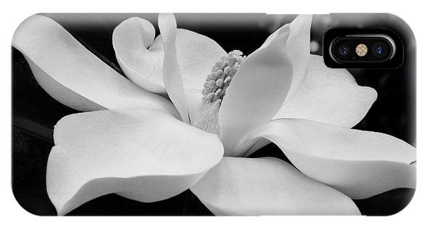 B W Magnolia Blossom IPhone Case