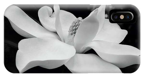 B W Magnolia Blossom IPhone Case