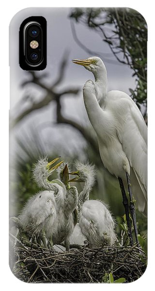 Babies In The Nest IPhone Case