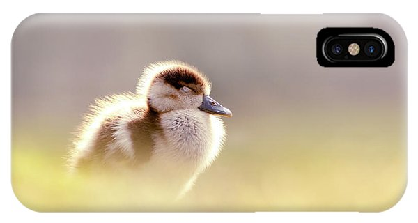 Goslings iPhone Case - Baby Animals Series - Zen Gosling by Roeselien Raimond