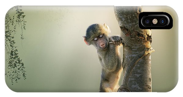 Dreamy iPhone Case - Baby Baboon In Tree by Johan Swanepoel