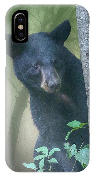 Baby Bear Takes A Peek IPhone Case