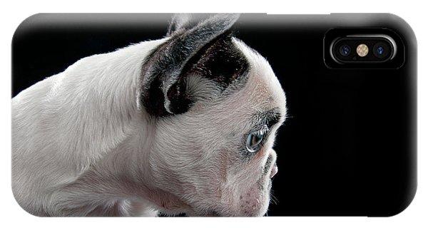 French Bull Dog iPhone Case - Baby Dog by Hugo Orantes