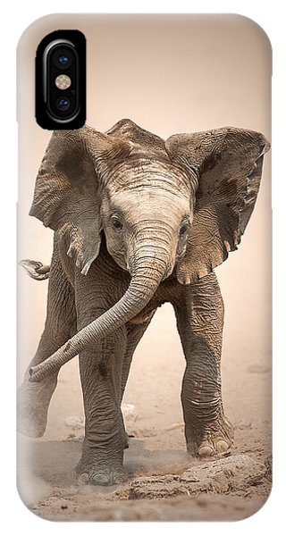 Dust iPhone Case - Baby Elephant Mock Charging by Johan Swanepoel