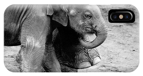Baby Elephant Security IPhone Case