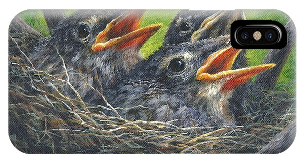 Baby Robins IPhone Case