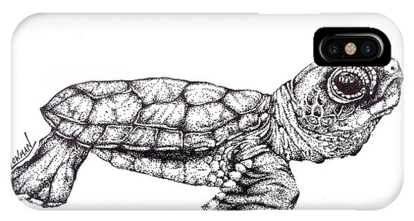 Turtle iPhone X Case - Baby Sea Turtle by Greg Lowman
