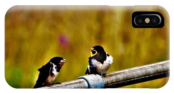 Baby Swallows IPhone Case