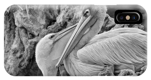 Baby White Pelican Talks To Mother White Pelican IPhone Case
