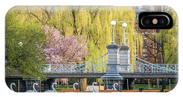 Back Bay Swans IPhone Case