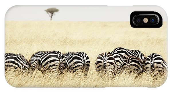 iPhone Case - Back View Of Zebras In A Row  by Jane Rix