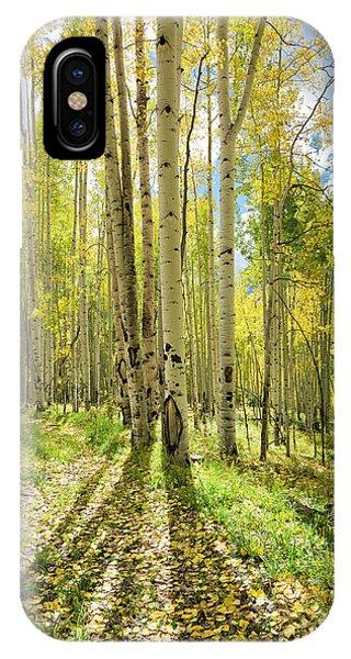 Backlit Aspen Trail IPhone Case