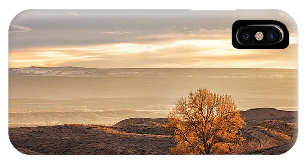 IPhone Case featuring the photograph Backlit Cottonwood by Denise Bush