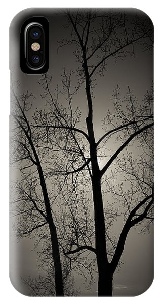 Backlit Trees IPhone Case
