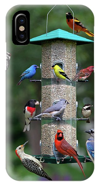 Backyard Bird Feeder IPhone Case