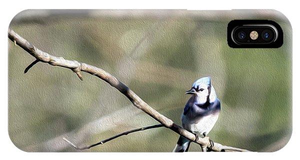 Backyard Blue Jay Oil IPhone Case