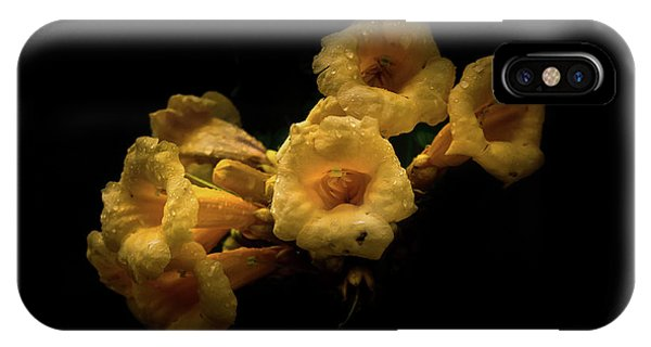 IPhone Case featuring the photograph Backyard Flowers 63 Color Version by Brian Carson