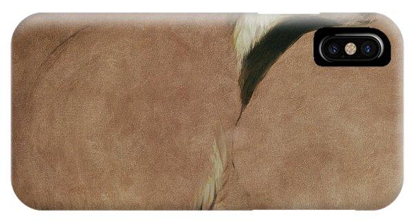 Badger IPhone Case