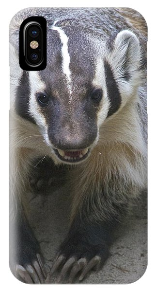 Badgered Badger IPhone Case