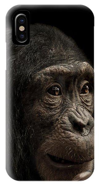 Chimpanzee iPhone Case - Baffled by Paul Neville