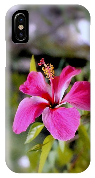 Bahamian Flower IPhone Case