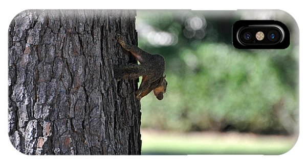 Balancing A Nut Phone Case by Teresa Blanton