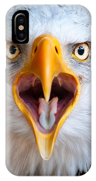 Bald Eagle Call IPhone Case