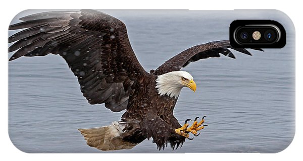 Bald Eagle Diving For Fish In Falling Snow IPhone Case