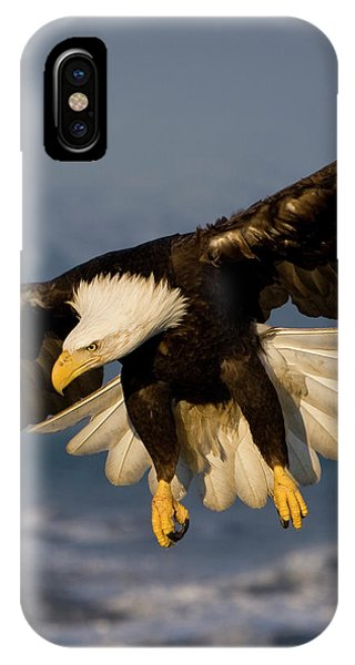 Bald Eagle In Action IPhone Case