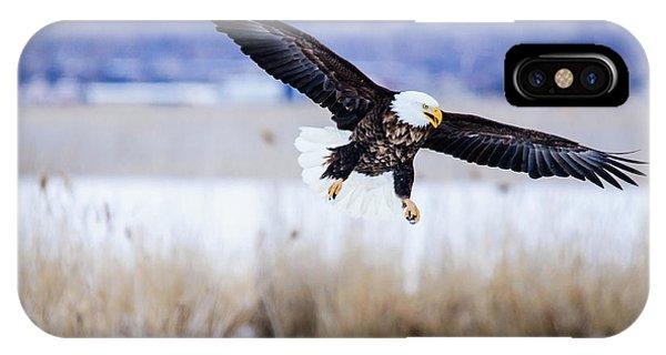 Bald Eagle Landing IPhone Case
