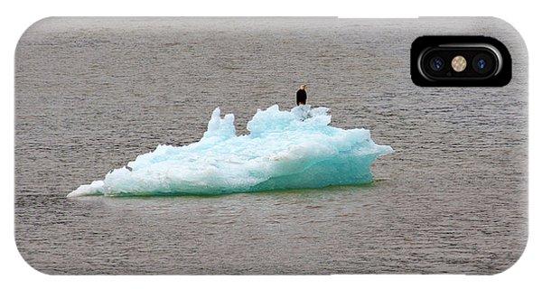 Bald Eagle On Blue Glacial Ice IPhone Case