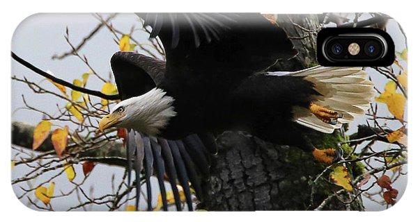 Bald Eagle Takes Flight IPhone Case