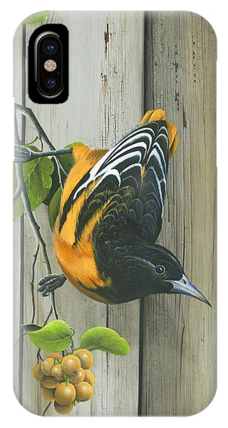 Baltimore Oriole IPhone Case