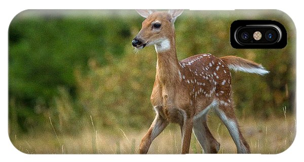 Bambi // Whitefish, Montana  IPhone Case